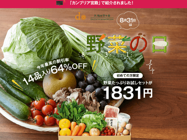 野菜の日 大地を守る会 お試しセット